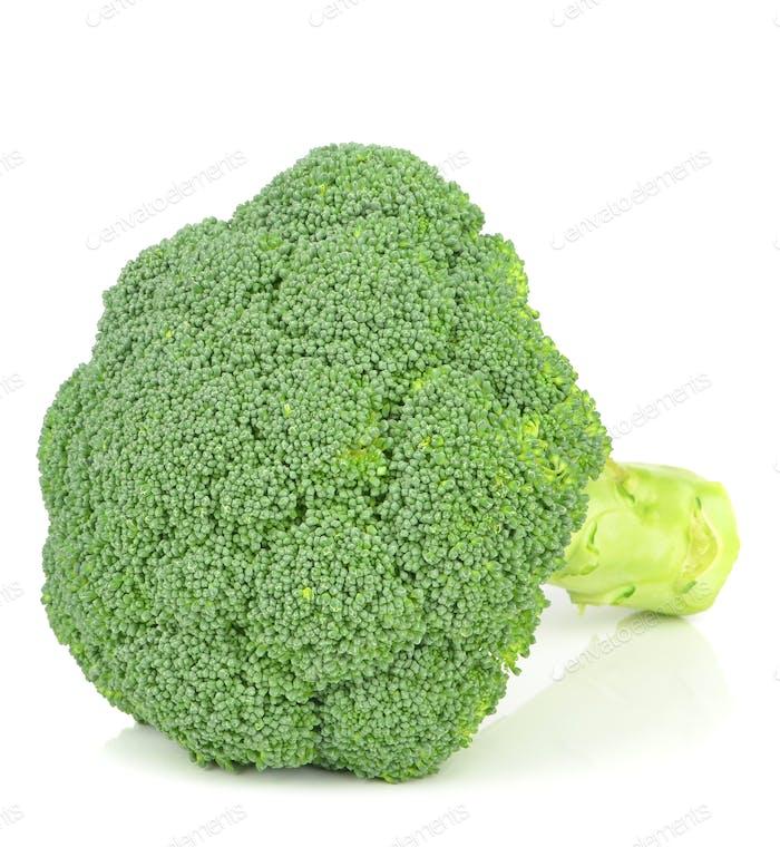 Fresh Piece of Broccoli