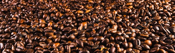 Coffee beans background. Beans spreed over table. Coffee banner