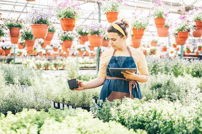 woman gardener in blue apron with contemporary tablet