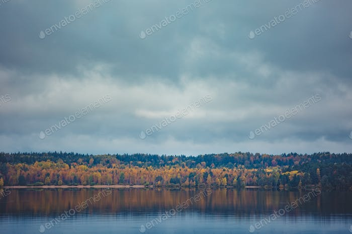 Autumn trees with reflection