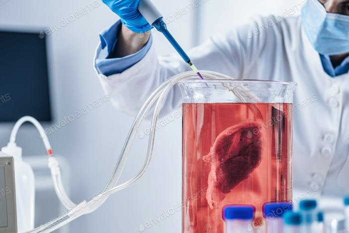 Lab-Grown Meat or in Vitro Meat.