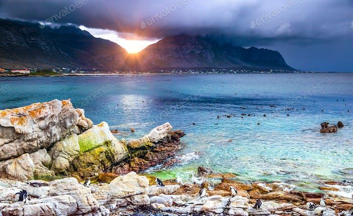 Erstaunlicher Blick auf eine Bucht
