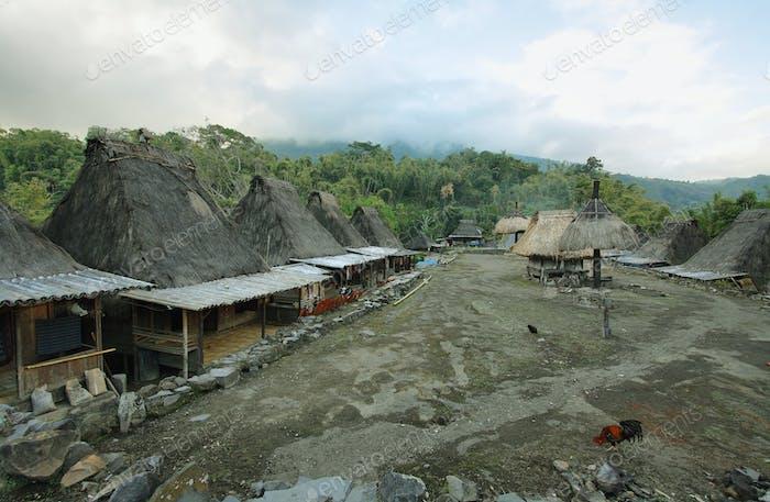 Bena village, Flores island