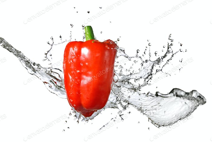 fresh water splash on red pepper isolated on white