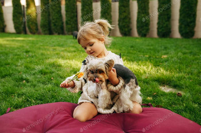 Kid embracing funny dog in the garden