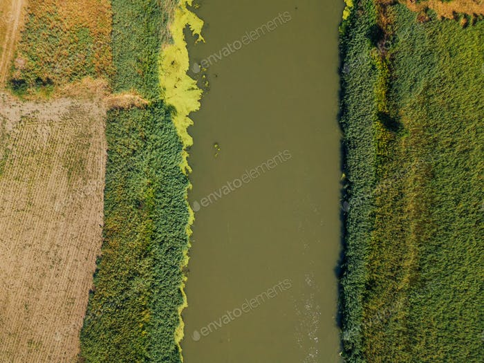 Aerial view of the river, top view