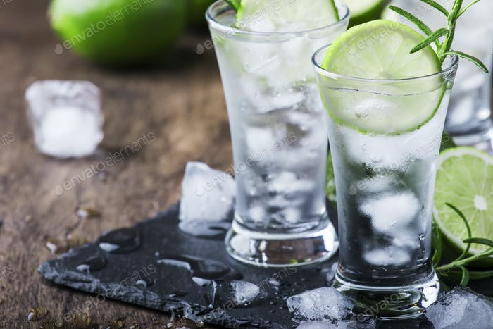 Classic gin tonic cocktail with lime, ice and rosemary