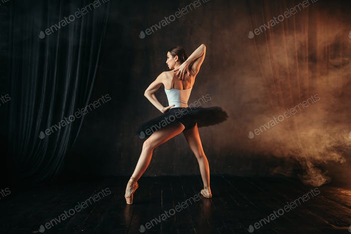 Ballerina in action, dance training on the stage