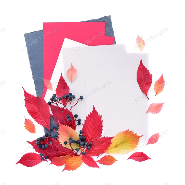 Autumn background with sheets of paper and autumn leaves. Top vi