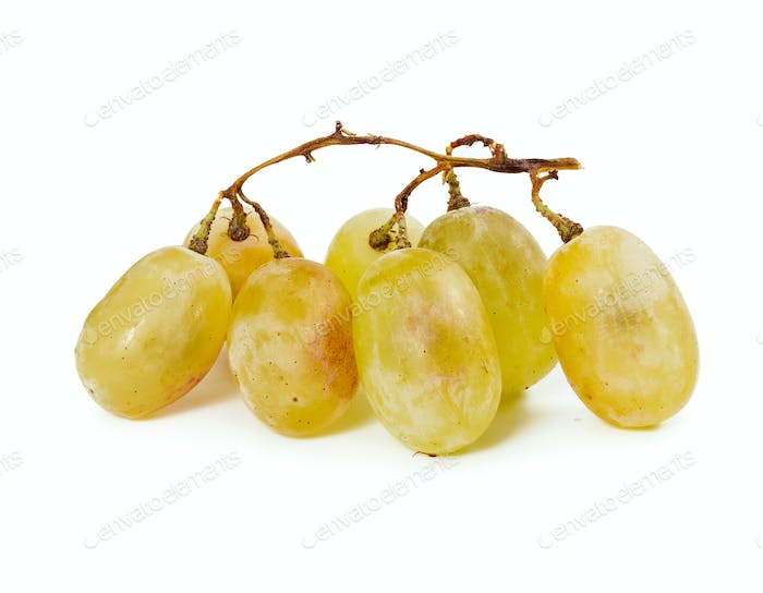 Yellow ripe grapes