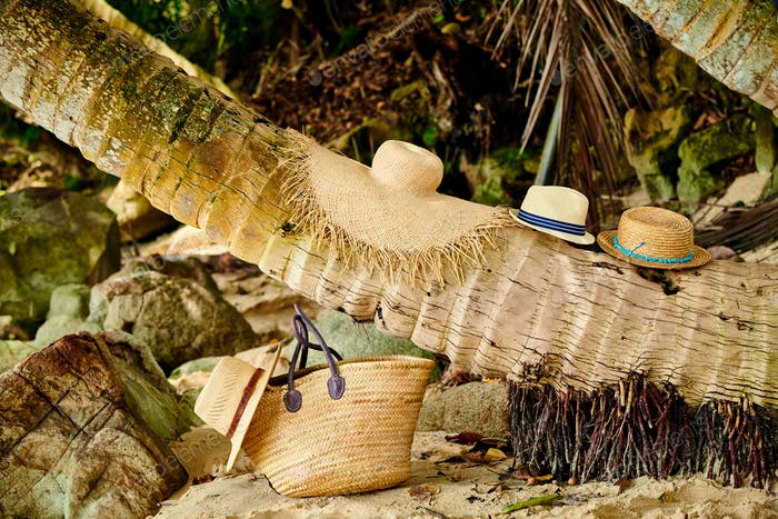 Beach bag and hats by palm tree