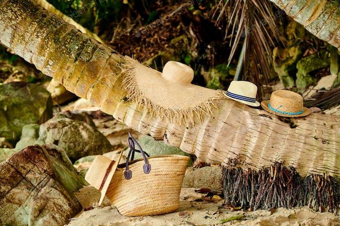 Bolso de playa y sombreros de palmera