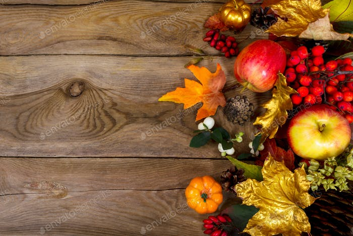 Thanksgiving background with apples, golden maple leaves, rowan