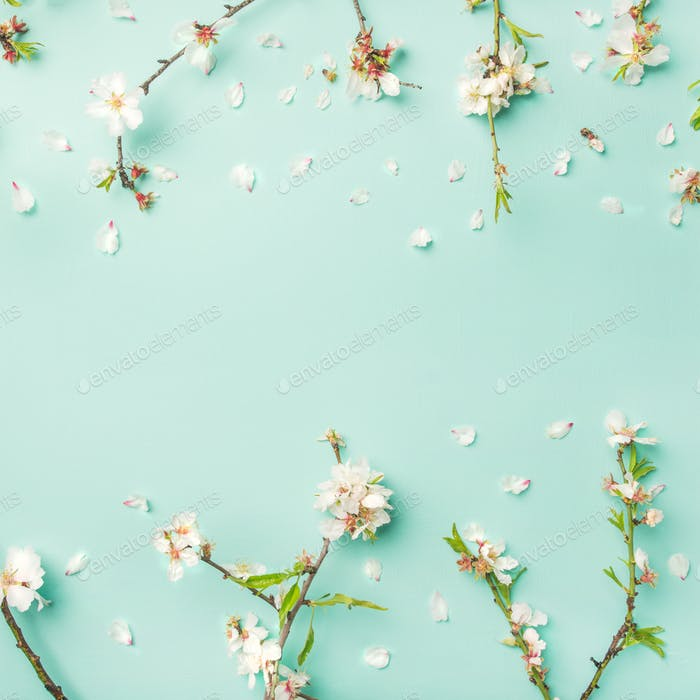 Spring floral background with almond blossom flowers, square crop