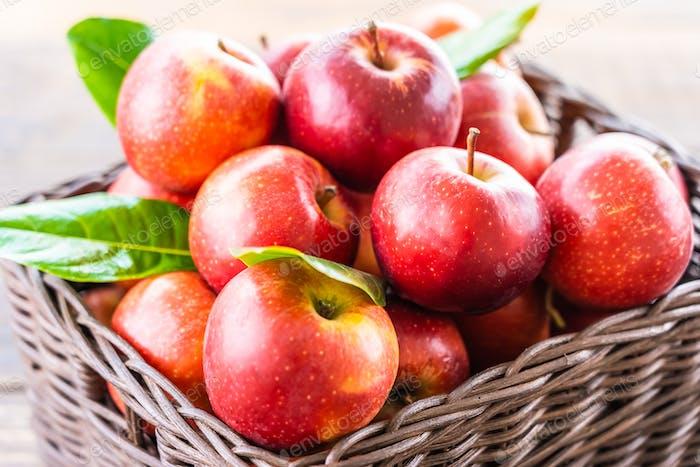 Red apple in basket