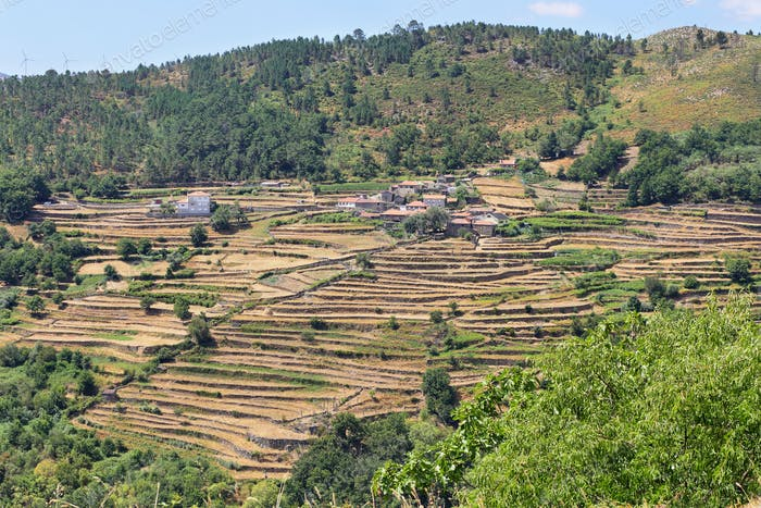 Viewpoint of the Terraces overlooking the Agricultural terraces Sistelo, Portugal.