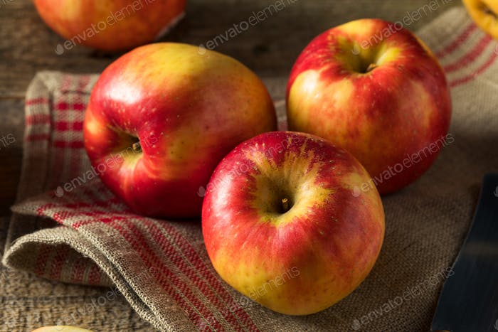 Raw Red Organic Sweet Tango Gala Apples
