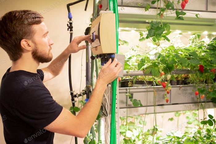 Using greenhouse environmental controller