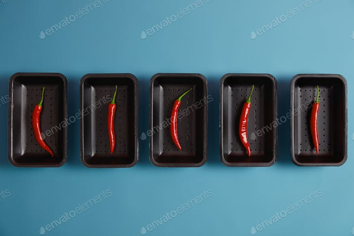 Spicy ingredient to your dishes. Thin red chili pepper on black trays isolated on blue background, p