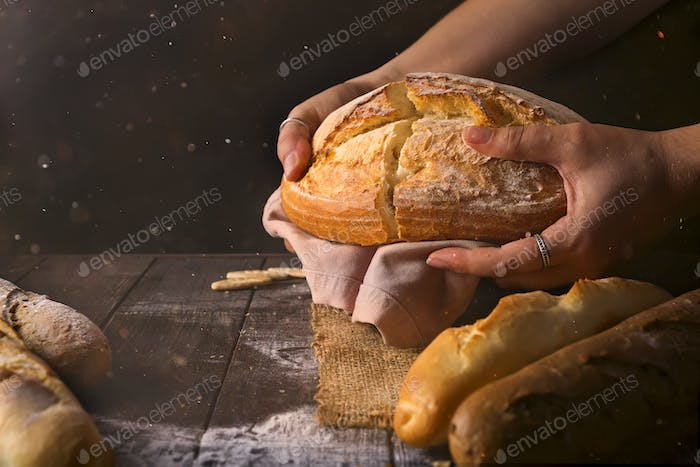 Loaf of fresh baked wheat bread in woman's hands in sunshine. Rustic day light in dark room.