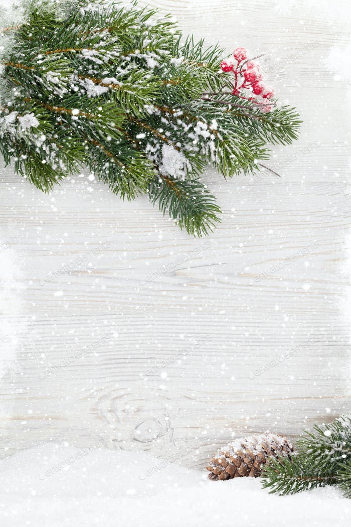 Christmas fir tree covered by snow