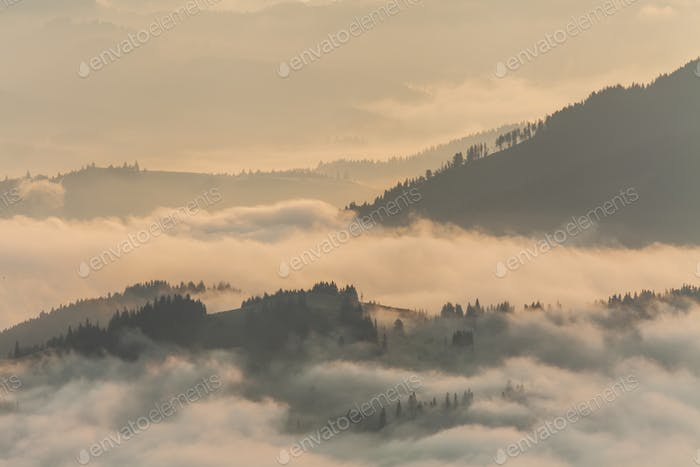 Amazing mountain landscape with dense fog. Carpathian Mountains.
