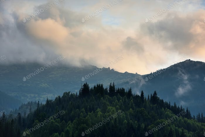 Mountain landscape in the morning mist after rain