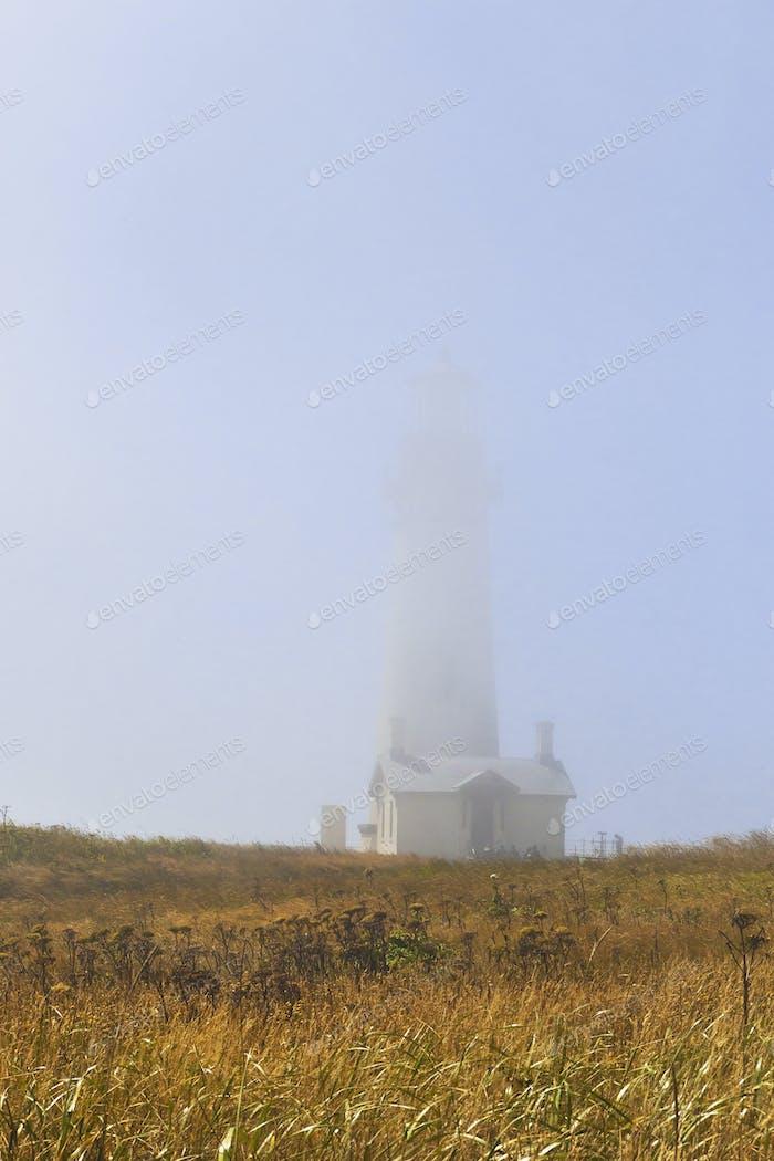 54386,Yaquina Head Lighthouse cloaked in fog, Newport, Oregon, United States