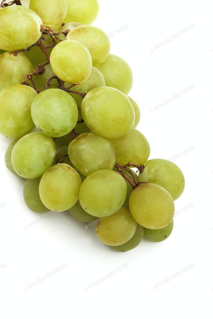 Green grapes macro