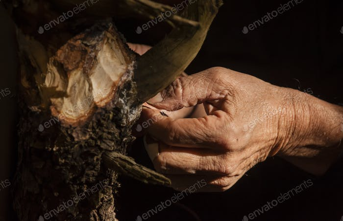 Old man hand working on wood