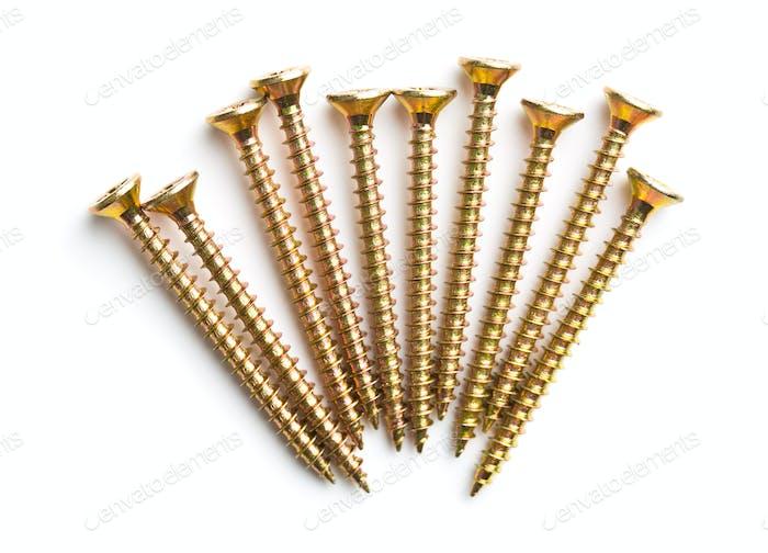 The metal screws.