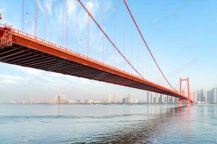 Wuhan Papagei Schwarm Yangtse Fluss Brücke