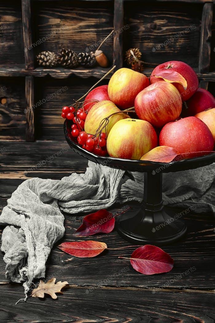 Äpfel in Vase für Früchte