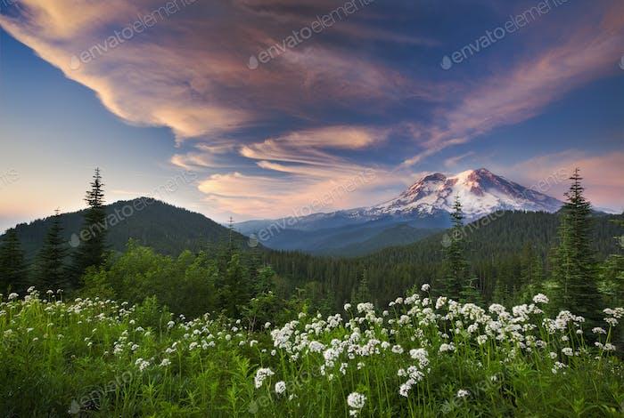 Mount Rainier, ein schneebedeckter Gipfel, in einer Landschaft, Mount Rainier Nationalpark.
