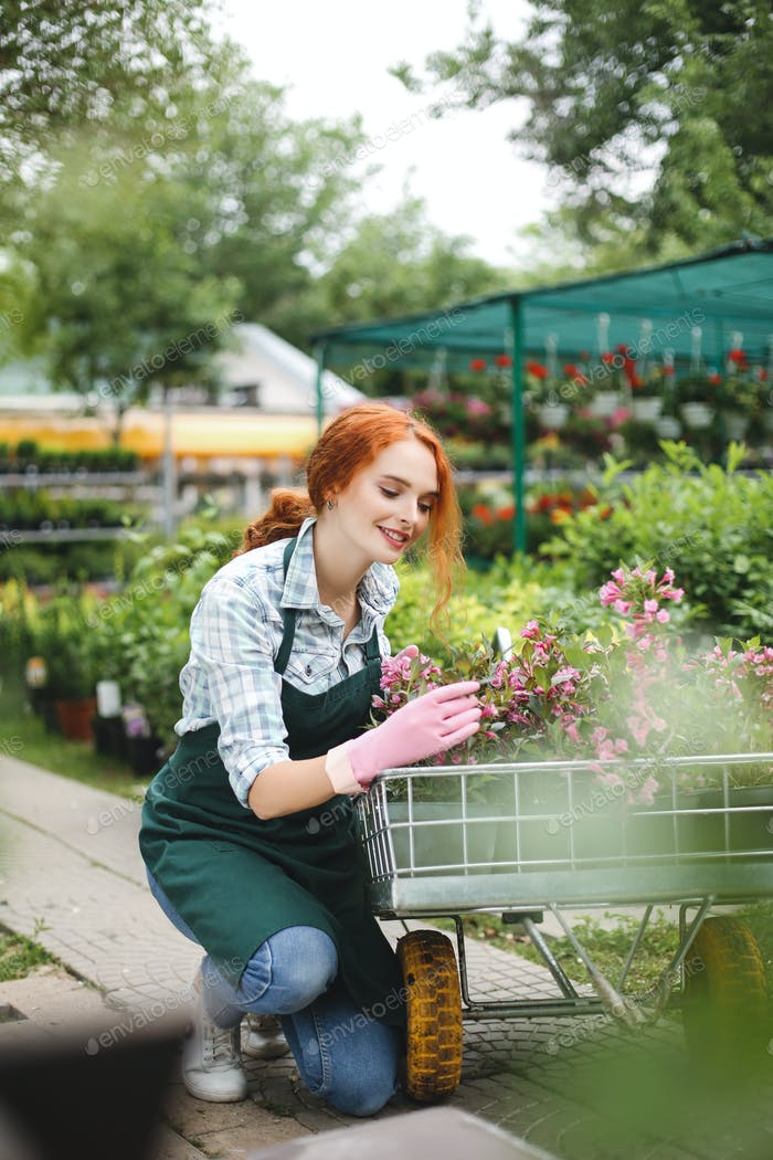 Cute lady in apron and pink gloves happily looking on flowers in garden cart