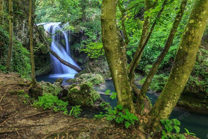 Vaioaga waterfall