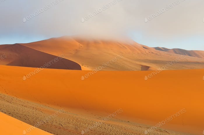 Dunes of the Namib
