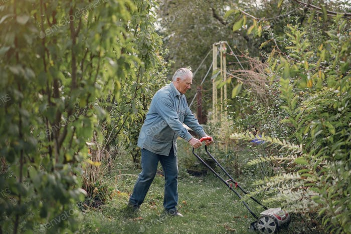 Senior mows the grass in the yard with a lawn mower