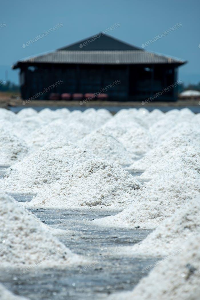 Mucha sal en los campos de sal de los agricultores en Tailandia.