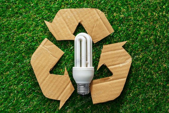 Eco energy saving light bulbs on grass background