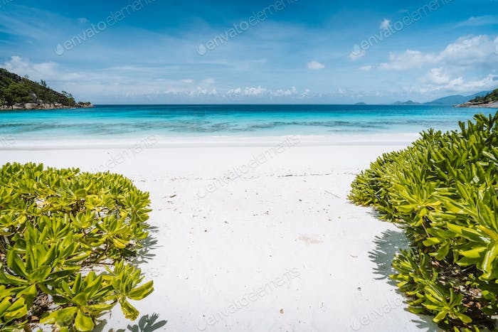 Petite Anse sandy beach with blue ocean lagoon located at Mahe Island, Seychelles. Exotic tropic