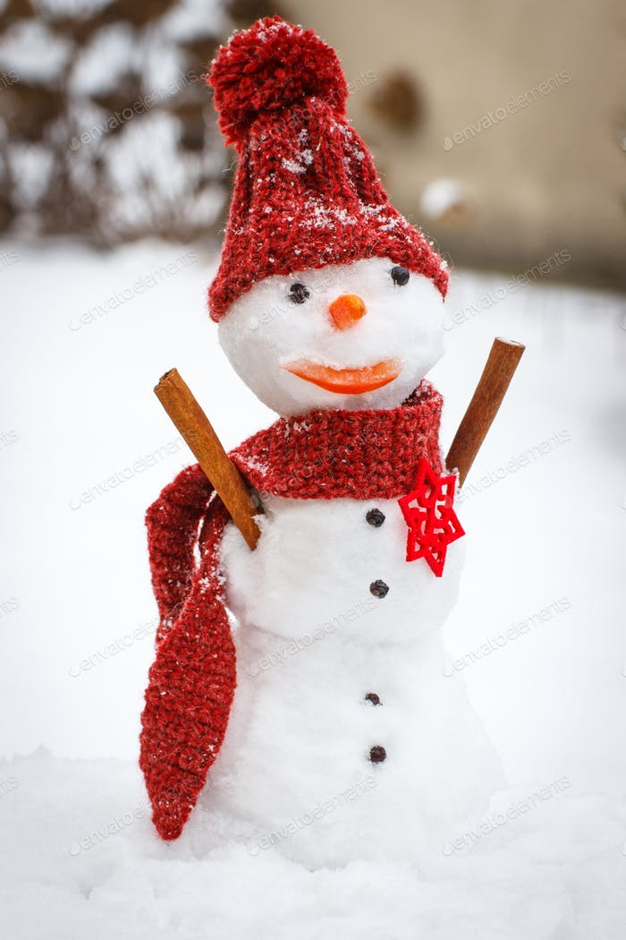 Snowman with woolen scarf and cap