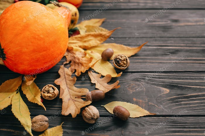 Beautiful pumpkin with bright autumn leaves, acorns, nuts, berries on wooden rustic table