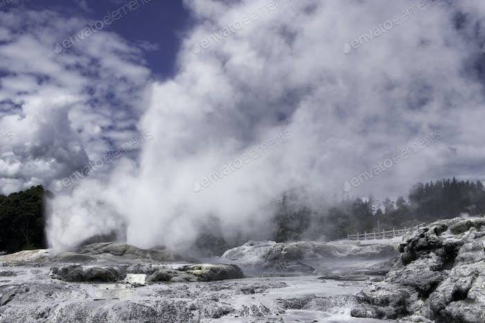 Geyser Te Puia New Zealand geothermal