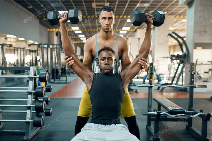 Two men doing exercise with dumbbells on bench