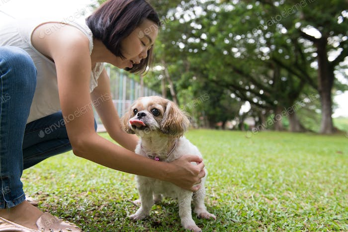 Asian young lady with her Shih Tze dog