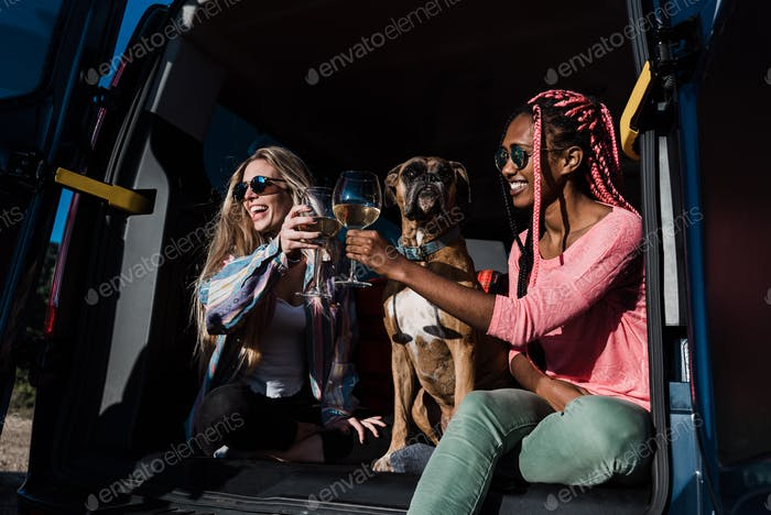 Multiracial people cheering with wine in camper van during summer vacation with pet dog