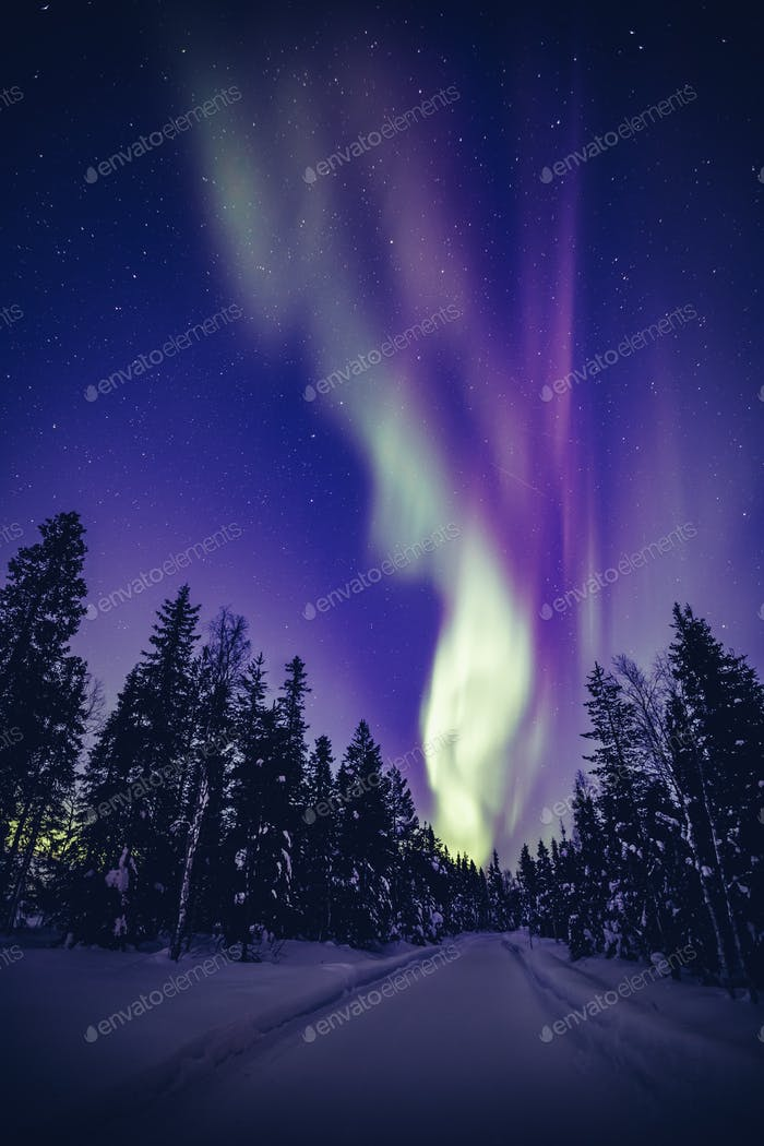 Northern Lights (Aurora Borealis) in the night sky over winter Lapland landscape, Finland