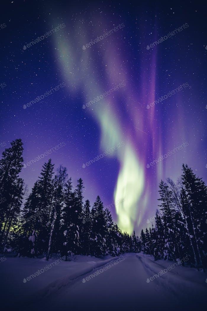 Nordlichter (Aurora Borealis) am Nachthimmel über Winter Lappland Landschaft, Finnland