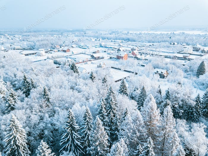 Aerial view of little village and snow winter forest with frosty trees